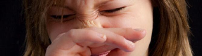 Uwaga alergicy! Trzy silne alergeny w ataku