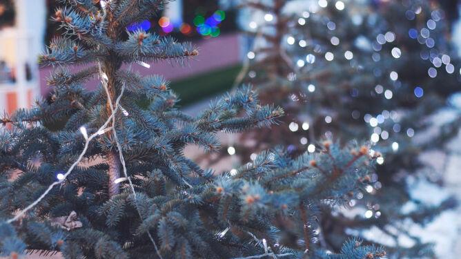Prognoza pogody na drugi dzień Świąt: od deszczu po śnieg, maksymalnie 6 stopni