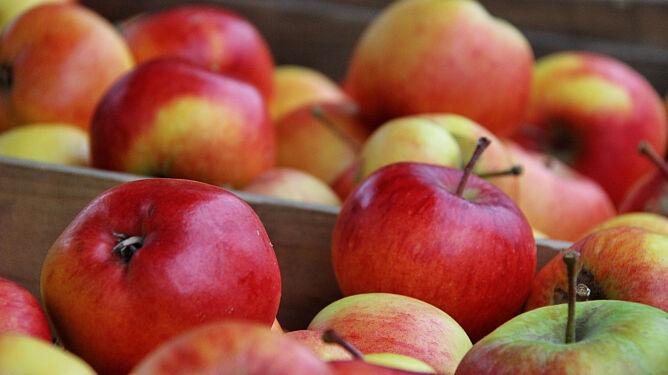 Uwaga na niebezpieczne, <br />brunatne plamki na owocach