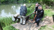 Odławianie łosia w parku Skaryszewskim w Warszawie (PAP/Radek Pietruszka)